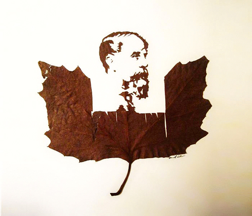 leaf-cutting-omid-asadi-11