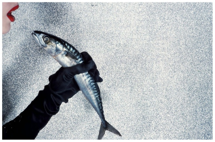 photo-guy-bourdin-silver-sparkles-and-er-a-fish-nd